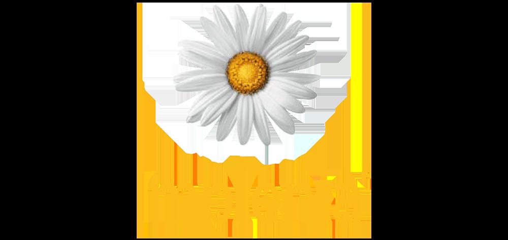https://cf.sharemac.de/wp-content/uploads/2021/02/16093721/sharemac-referenz-implenia-logo.png
